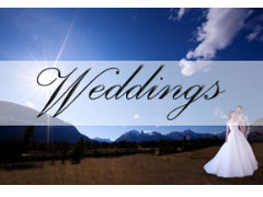 Creative and elegant wedding and family photography. Portrait ...