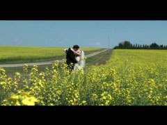 Wedding Videos by Pangean Pictures, Calgary