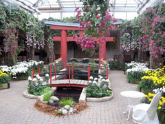 The Assiniboine Park Conservatory, Winnipeg