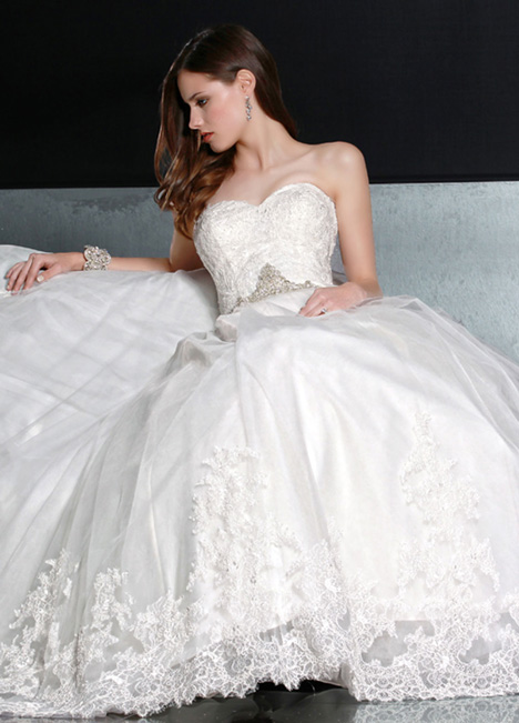 50193 gown from the 2014 DaVinci collection, as seen on dressfinder.ca