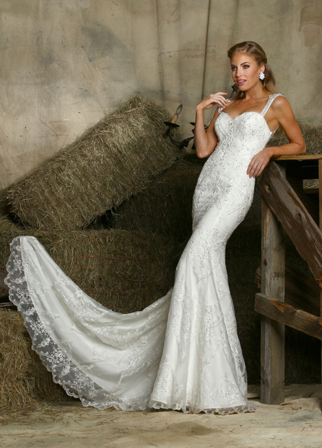 50338 gown from the 2015 DaVinci collection, as seen on dressfinder.ca