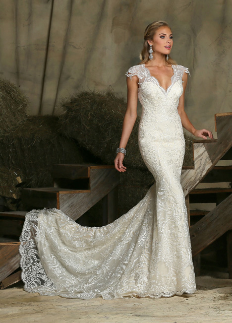 50329 gown from the 2015 DaVinci collection, as seen on dressfinder.ca