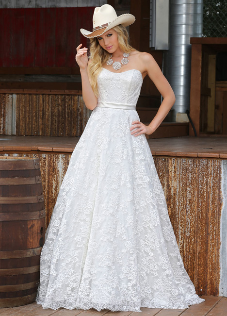 50302 gown from the 2015 DaVinci collection, as seen on dressfinder.ca
