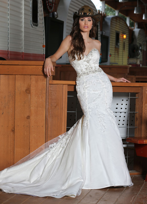 50314 gown from the 2015 DaVinci collection, as seen on dressfinder.ca