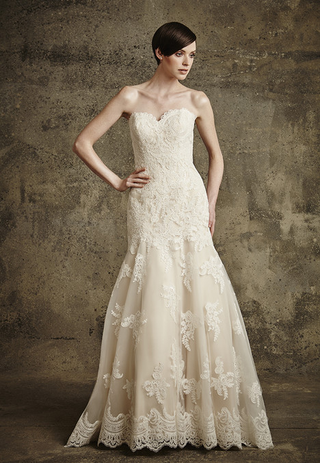 1561 gown from the 2016 Madison Collection collection, as seen on dressfinder.ca