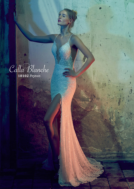 Peyton (18102) gown from the 2018 Calla Blanche collection, as seen on dressfinder.ca
