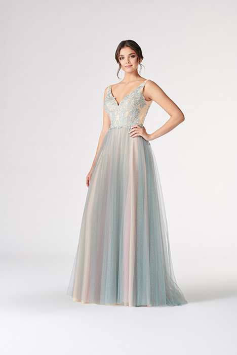 43676662d99 CL19818 gown from the 2019 Colette by Mon Cheri collection
